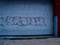 "grafitti that reads ""bronx"" on a wall in brooklyn, ny"
