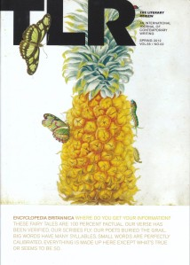Cover of the Spring 2012 Issue of The Literary Review